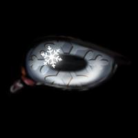 Snowflake--Jan