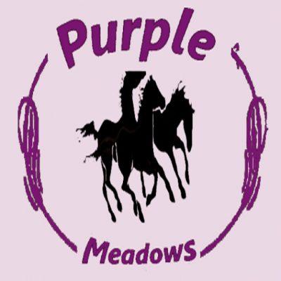 purplemeadows3