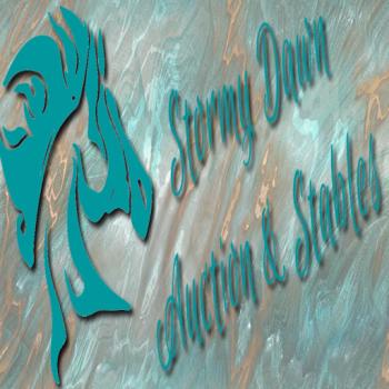 stormydawnlogosquare
